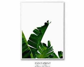 Banana Leaf, Leaf Print, Palm leaf, Scandinavian print, Botanical Print, Wall art prints, Palm tree print, Nature prints, Printable wall art