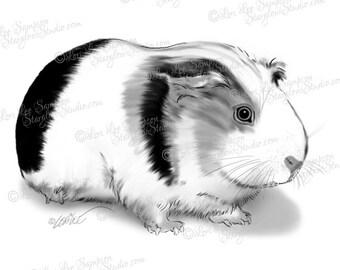 Guinea Pig Digital Clip Art | Digital Stamp | Digital Download | Drawing Sketch illustration | Scrapbooking Clipart, Crafts | Pets DigiStamp