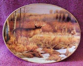 Limited Edition Set of 3 Woodland Tranquility Bradford Exchange plates