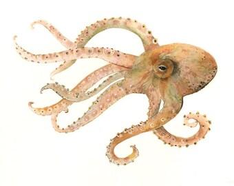 Octopus n ° 2 l impression de peinture à l'aquarelle
