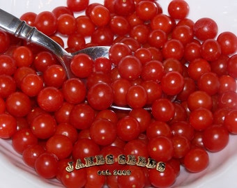 Worlds smallest - Spoon x Piccolo Current Cherry Tomato Seeds