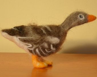 Gustav (Gray Goose)