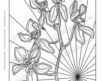 """Orchids on Glass """"Multiple Bloom Orchid Sunburst"""" Adult coloring page printable download from Artwork Anywhere ~hand drawn orchid flowers~"""