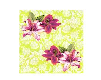 Paper napkin for decoupage, mixed media, collage, scrapbooking x 1.  Tropical Garden. No 1035