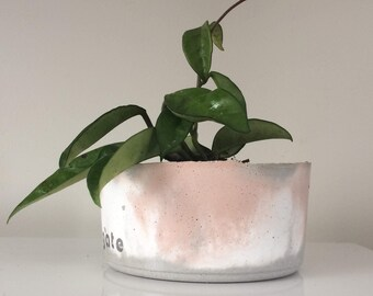 marbled concrete pot and plant.