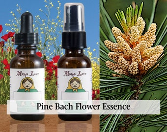 Pine Bach Flower Essence, Dropper or Spray for Self-Forgiveness, Releasing Guilt or Self-Blame