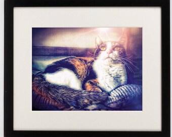 cat art print, fantasy art, magical digital art, cat lover gift, mystic feline art, calico cat, photo print, cat picture, pet card, animals