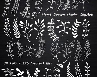 White Hand Drawn Herbs Clipart, Chalkboard clipart , Herbs Silhouette, PNG, EPS, AI, Vector, Laurel Clipart, Personal and Commercial Use
