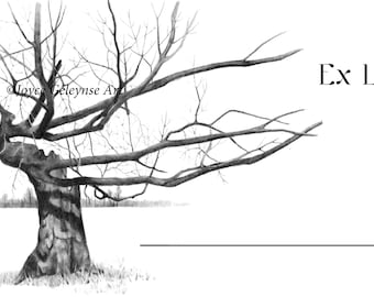 """Bookplate, Book Stickers, EX LIBRIS, With Pencil Artwork of Bare Tree, Pencil Art, From Library Of: 2"""" by 4"""" Labels, 40 Stickers"""