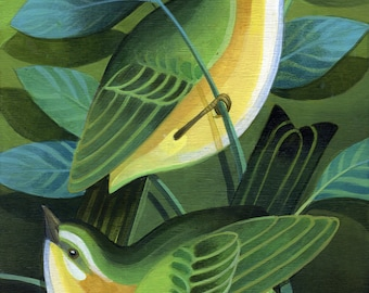 Green Warblers