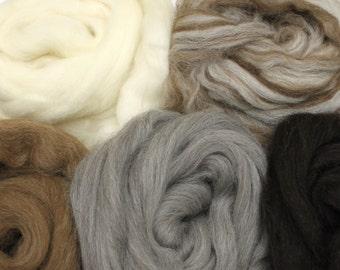 Shetland Wool Sampler - Undyed Roving for Spinning or Felting (10oz)