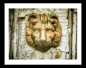 Lion head door knocker, rustic old door, home decor,  Harpers Ferry, West Virginia
