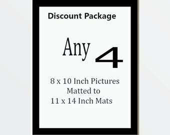 Discount Package for 4 8 x 10 Pictures Matted Into 4  11 x 14 White Mats