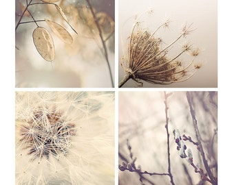 Neutral Nature Photography Set, dandelions, pussy willows, woodland decor, neutral, brown, gray, photo set - 4x4, 5x5, 8x8, 10x10, 12x12