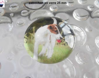 1 cabochon in. smooth domed glass 25mm fox terrier has hair theme