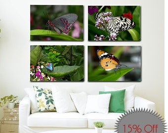 Set of 4 Canvas Wraps-Butterfly Photography-Botanical Wall Art-Fine Art Collection-Nature Photography-Gallery Wrap Canvas-Horizontal Canvas