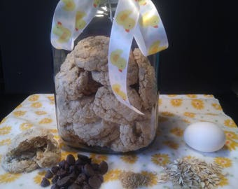 Milk Boosting Cookies for the Nursing Mama