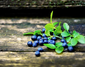 Digital Download photography of nature Blueberry