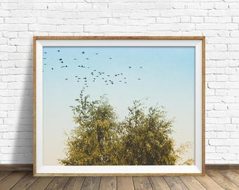 """digital photography wall art, instant download printable art, large wall art, large art, nature photography prints, nature prints - """"Fly By"""""""