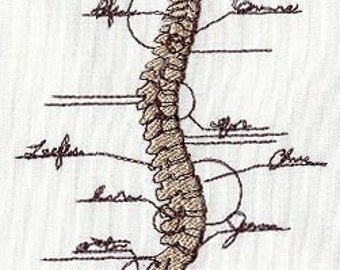 Anatomical Spine Embroidered Flour Sack Hand/Dish Towel
