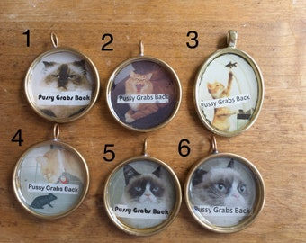 Pussy grabs back, political necklace, grumpy cat, pussy bites back, brass necklace, cat, cat accessory, mother's day gift, teen jewelry, art