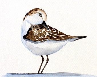 seagull original watercolor painting bird painting seagull painting approx.23,7x16cm (9.48x6.44inch)