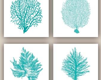 Mer fan Art, marin d'impression, plage cottage décor, pépinière art décor, art nautique, fan de mer, algues, vie de mer 4 tirages 8 x 8