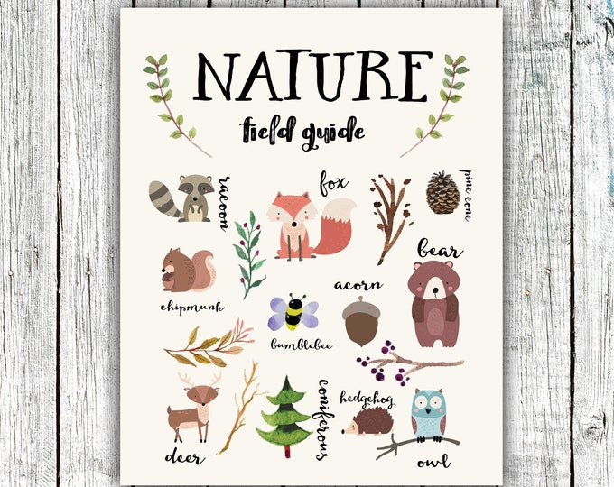 Featured listing image: Nature Field Guide Poster, Woodland, Children's Prints,Nursery Printable, gender neutral, animals, Digital Download Size 16x20 or 8x10