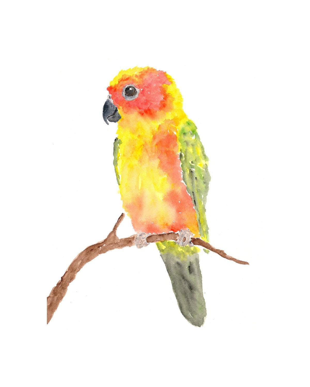 Watercolor parrot painting - sun conure parrot art - tropical decor watercolor painting - bird print - tropical painting - yellow, 8X10