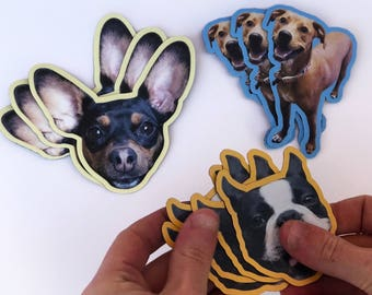 Custom Magnet Sets of YOUR Pet