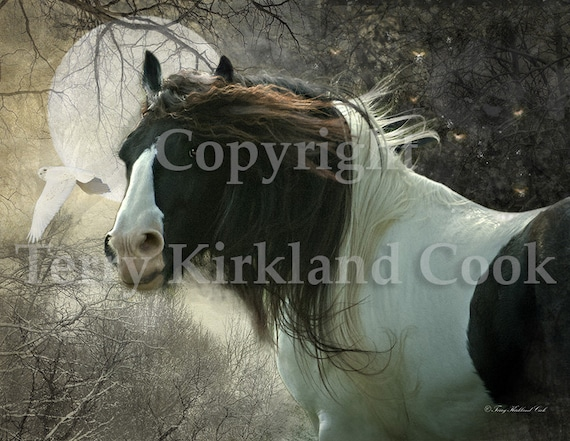The Beautiful Dream ~ Copyrighted Photograph by Terry Kirkland Cook