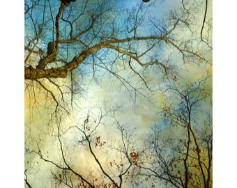 Abstract Sky Photograph, Blue Gold Modern Decor, Tree Print, Landscape Photography