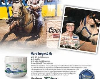 Equienty Horse XL