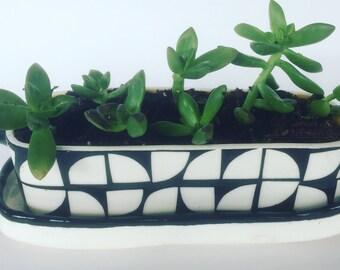 ceramic planter, succulent planter, Black and White Planter