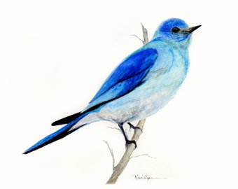 Mountain Blue Bird Archival Print of Original Watercolor 8x10 Aqua Blue Gray Home Office Decor Nature.