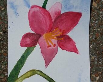 Original Watercolor Lily