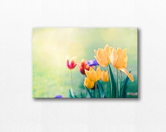 canvas wall hanging canvas wall art floral flower photography fine art photography tulips canvas print yellow pastel art nature mint