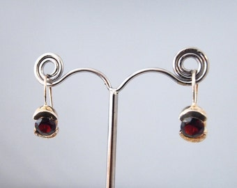 Silver earrings and Garnet stones