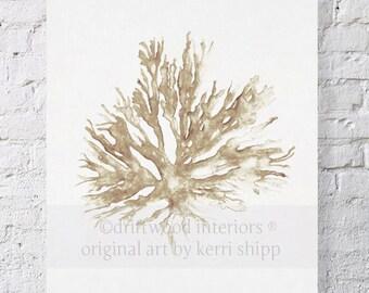 Sea Coral II in Natural Watercolor Print 8x10 - Coral Art Print - Watercolor Art Print - Sea Fan - Seaweed Art