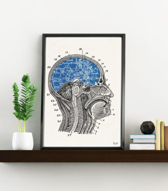 Constellations Brain collage Art and collectibles. Wall decor art, Anatomy prints wall decor Constellation print SKA196WA4