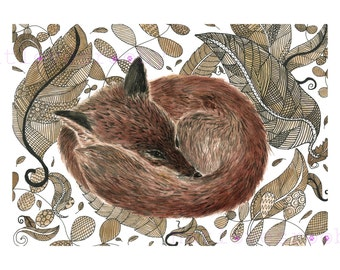 Fox giclee print/ A4 Fox  Giclee print/ fox ink drawing