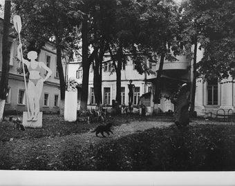 9.5x12 inch gelatin silver print - street photography - Cat (among sculptures)