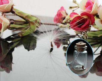 Large dandelion seeds-10pcs dandelion seeds for DIY glass globe necklace jewelry making