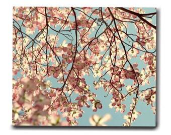 Large botanical wall print, oversized canvas art, dogwood tree fine art floral canvas, baby girl room decor, aqua pale pink bedroom canvas