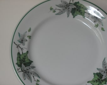 Shenango Ivy Glen . Restaurant China . Restaurant Ware . Four Piece Setting . Five Settings Available