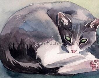 Smokey Gray White Cat Printable Image of Original Watercolor Painting Instant Download Art Digital Print Picture Wall Decor Artwork