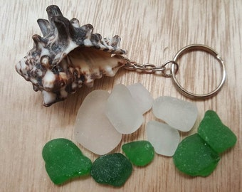 Sea Conch Keychain and 10 Pieces of White and Green Sea Glass, Genuine Greek Sea Glass, Natural Shell