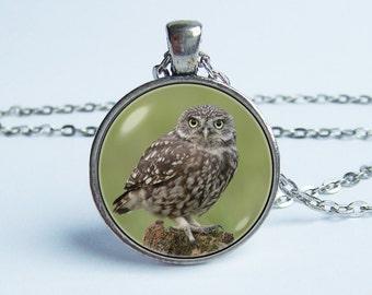 Owl necklace Bird pendant Owl jewelry Wild bird Owl animal necklace Photo necklace Nature jewelry Bird gift Owl bird pendant Bird necklace