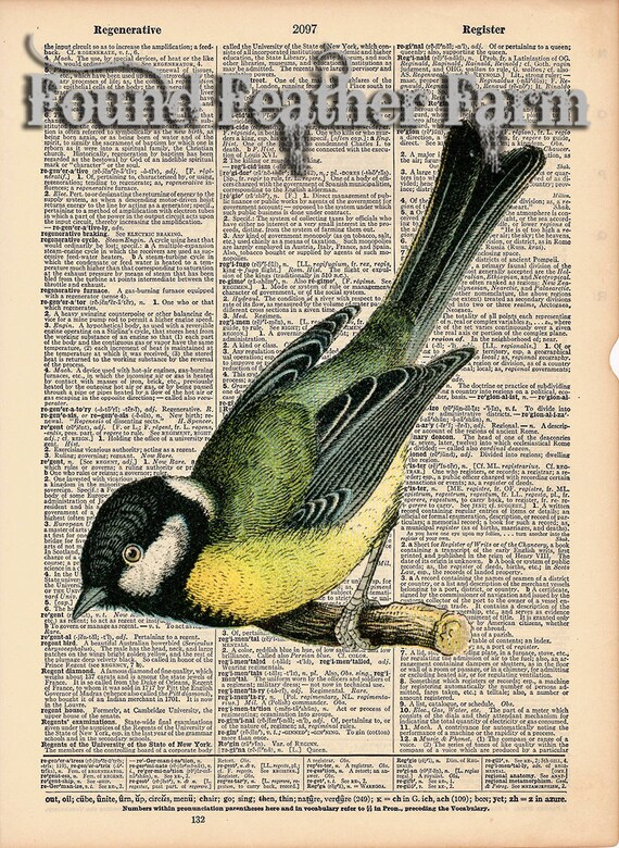 """Vintage Antique Dictionary Page with Antique Print """"Yellow Bird"""""""