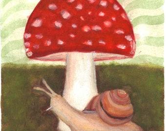 Amanita snail